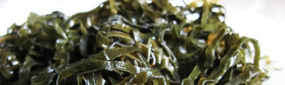 Лечение водорослями