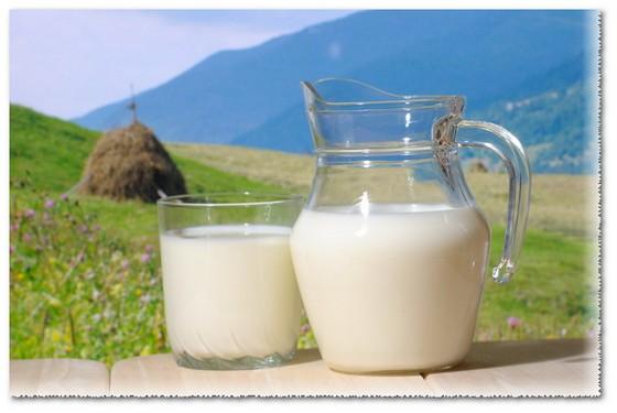 сыворотка молока